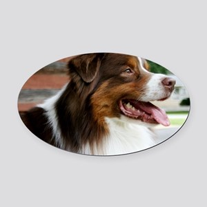 REDFRAMEDPRINTLARGE Oval Car Magnet