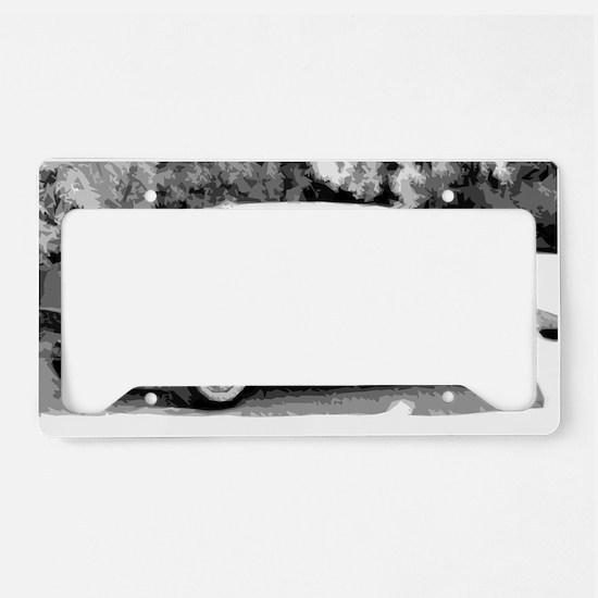 belair License Plate Holder