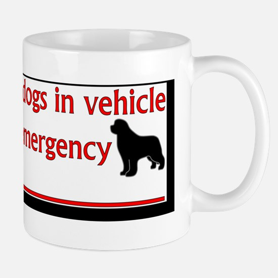 NewfsInVehicle Mug