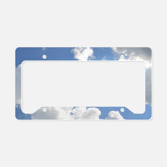 Alliswell License Plate Holder