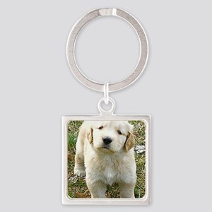 Golden Retriever Puppy iPad Hard C Square Keychain