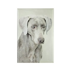 Weimaraner Rectangle Magnet (10 pack)