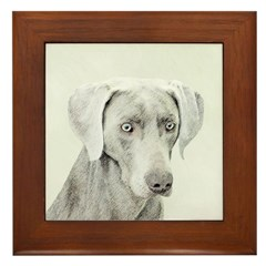 Weimaraner Framed Tile