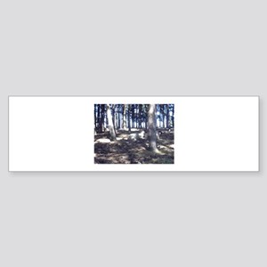 Sheep in Trees Bumper Sticker