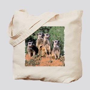 MEERKAT FAMILY PORTRAIT stadium blanket Tote Bag