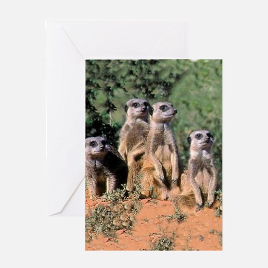 MEERKAT FAMILY PORTRAIT stadium blan Greeting Card