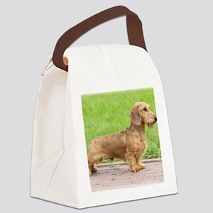 Dachshund 9Y426D-178 Canvas Lunch Bag
