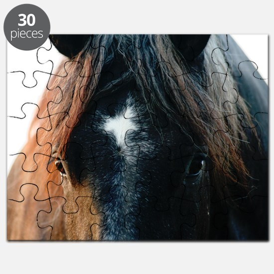 yTE0H5LC Puzzle