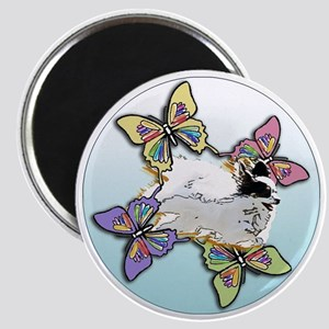 Agility Papillon Magnet