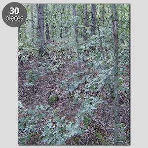 ff023 Puzzle