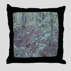 ff023 Throw Pillow
