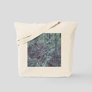 ff023 Tote Bag