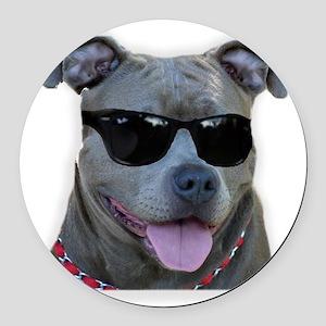 Pitbull in sunglasses Round Car Magnet