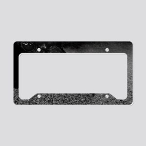 crow-photo-130-crop-Poster License Plate Holder