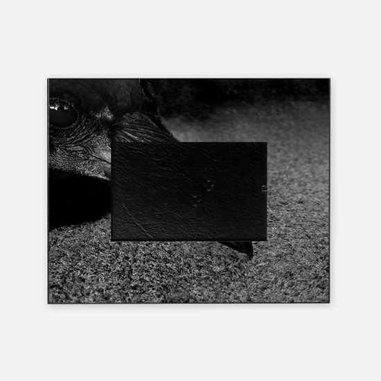 crow-photo-130-crop-Poster Picture Frame