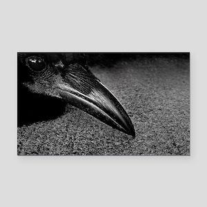 crow-photo-130-crop-Poster Rectangle Car Magnet