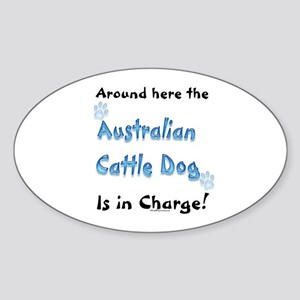 ACD Charge Oval Sticker