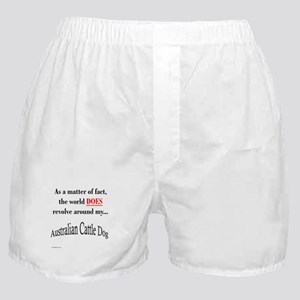 ACD World Boxer Shorts