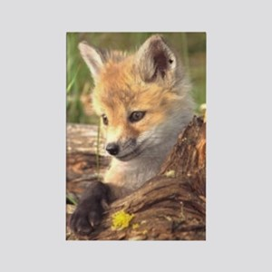fox endangered Rectangle Magnet