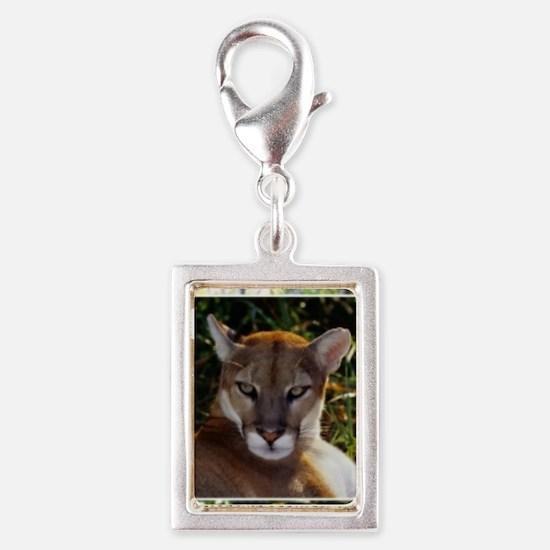 Florida Panther 820 Silver Portrait Charm