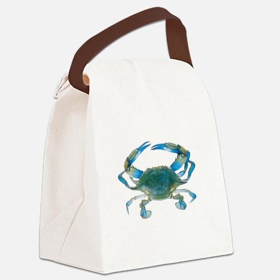 wye2011 Canvas Lunch Bag
