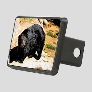 American Black Bear 3 Rectangular Hitch Cover