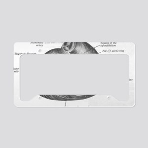 Grays Anatomy Fig 6.23 License Plate Holder