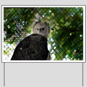 Harpy Eagle Yard Sign