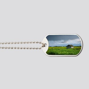 Wooden Shed in Canola Field Dog Tags