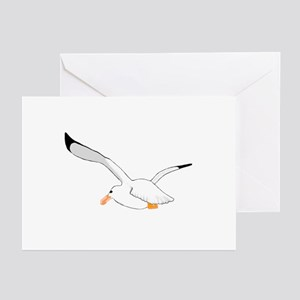 Seagull In Flight Greeting Cards (Pk of 10)