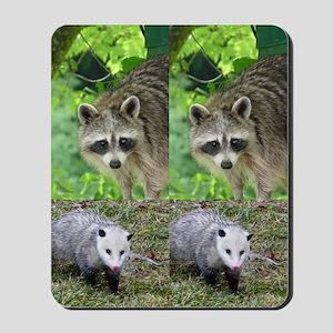 Ra10.526x12.885(203) Mousepad