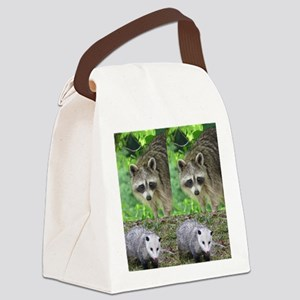 Ra10.526x12.885(203) Canvas Lunch Bag