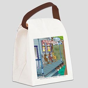 6755_denture_cartoon Canvas Lunch Bag