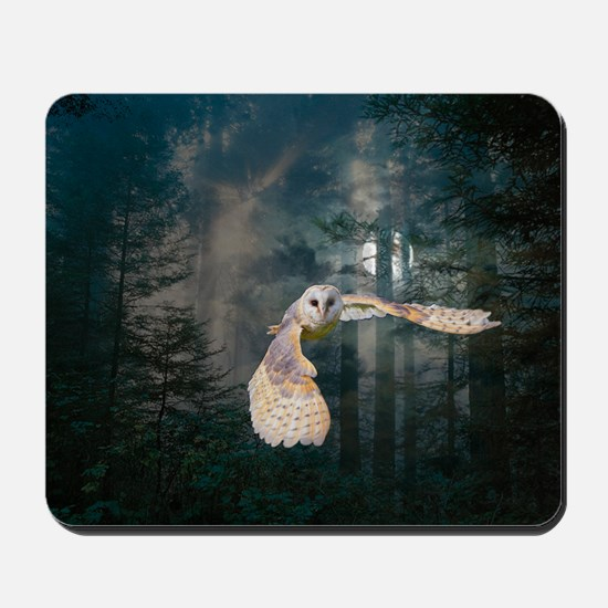 owl at midnight Mousepad