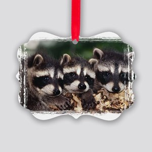 3 Raccoons Picture Ornament
