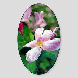 Floral Art Sticker (Oval)