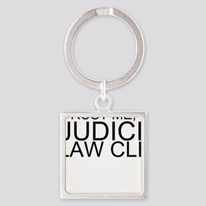 Trust Me, I'm A Judicial Law Clerk Keychains
