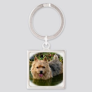 Norwich Terrier 9Y235D-087 Square Keychain