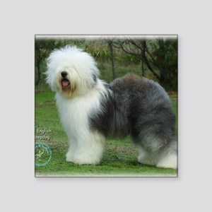 "Old English Sheepdog 9F054D Square Sticker 3"" x 3"""