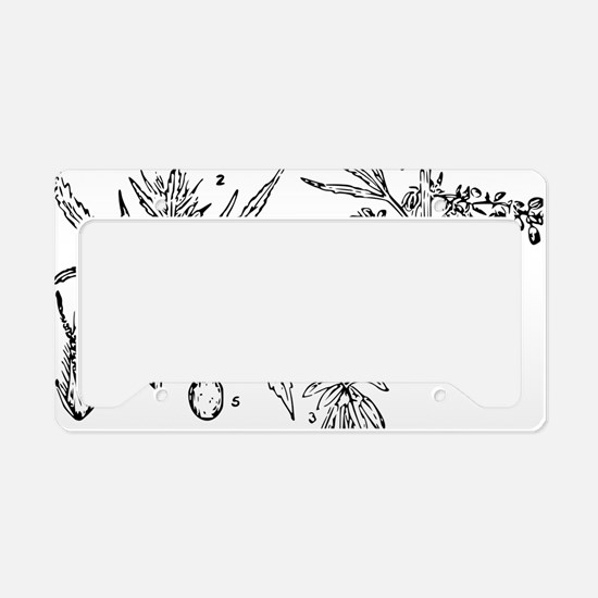 hemp License Plate Holder