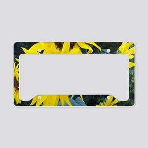 Sunflowers2 License Plate Holder