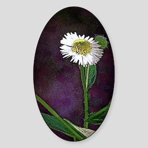 One Daisy Sticker (Oval)