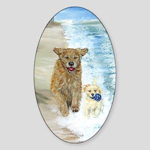 Golden Surf runners Sticker (Oval)