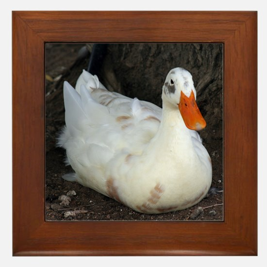 White Duck Framed Tile