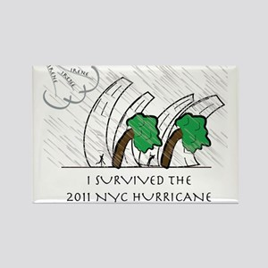 HURRICANE IRENE Rectangle Magnet