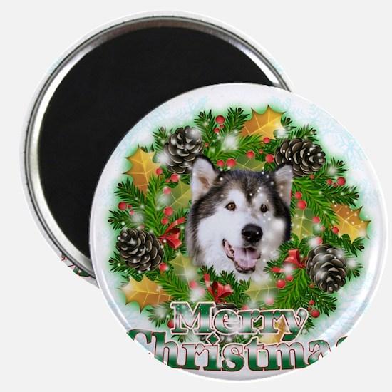 Merry Christamas Alaskan Malamute Magnet