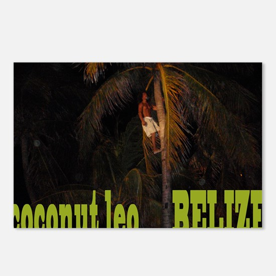 Coconut Leo up a tree Postcards (Package of 8)