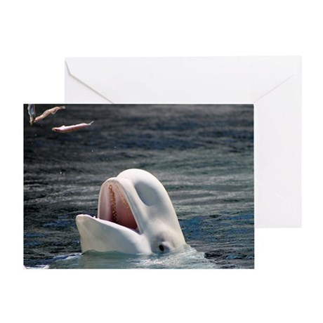 Beluga Whales 5 Greeting Card
