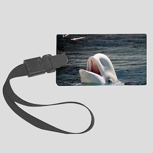 Beluga Whales 5 Large Luggage Tag