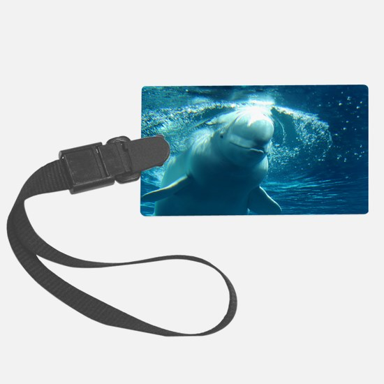 Close up of a Beluga Whale 5 Luggage Tag